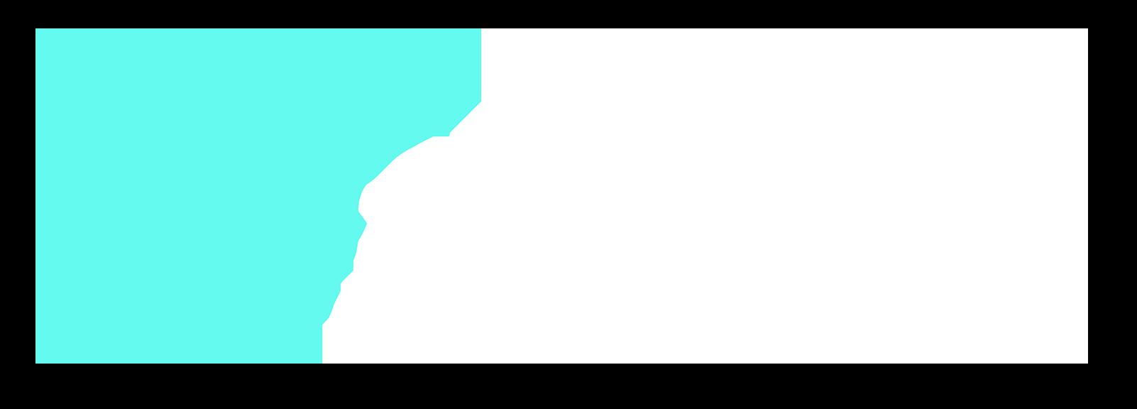 Solution Brigade